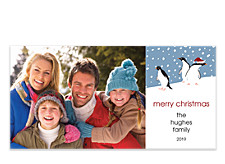 Curious Penguins Horizontal Holiday Photo Cards
