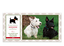 Scottie Photo Christmas Cards
