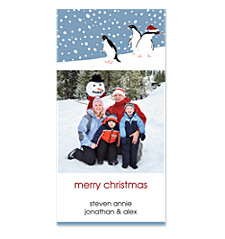 Curious Penguins Vertical Holiday Photo Cards