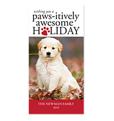 Paws-itively Awesome Photo Holiday Cards