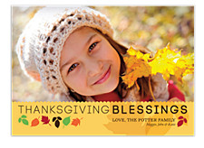 Fall Colors Happy Thanksgiving Photo Cards