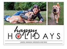 Pooch Red Christmas Photo Cards