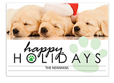 Pooch Green Holiday Photo Cards