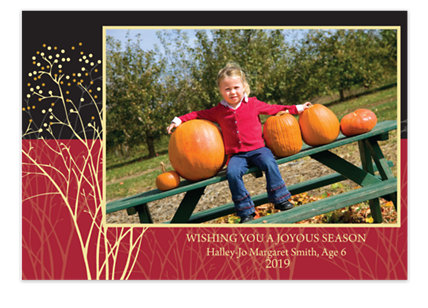 Golden Berry Holiday Photo Cards