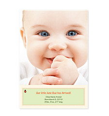 Ladybug Photo Birth Announcement Cards